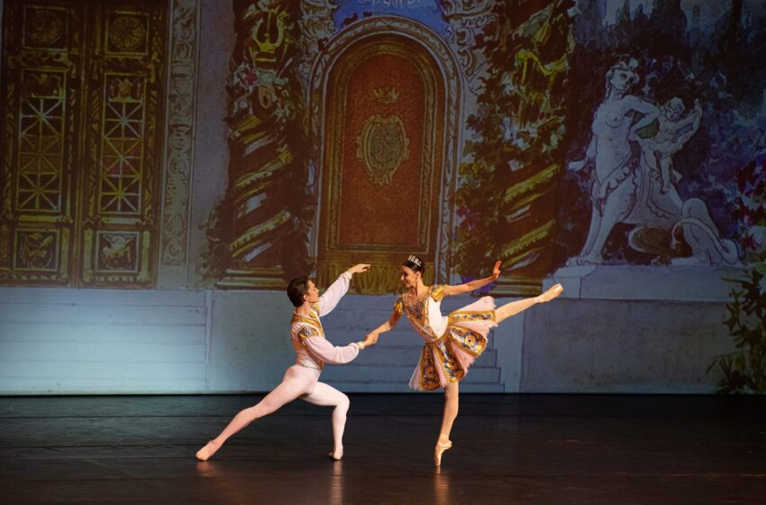 Nieuwe Artiste Picasso ingezet bij Mexicaanse balletvoorstelling