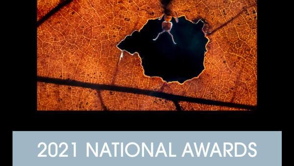 Alex Pansier wint Netherlands National Award 2021